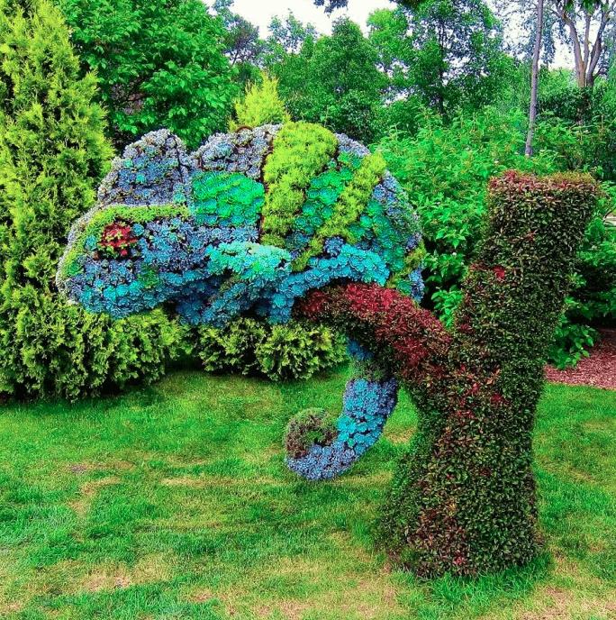 iguana topiary